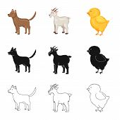 Vector Design Of Breeding And Kitchen  Symbol. Collection Of Breeding And Organic  Vector Icon For S poster