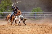 Men On Horseback Lassoing A Running Calf As A Team In The Calf Roping Sporting Event At A Country Ro poster