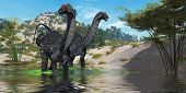 picture of behemoth  - Two Apatasaurus dinosaur wade through a lush pond looking for plants to eat - JPG