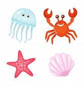 Red Crab And Starfish, Cute Jellyfish Vector. Tropical Characters With Faces, Shell Mollusk Marine D poster
