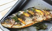 Grilled fresh trout with herbs and lemon on a fryer
