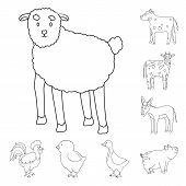 Isolated Object Of Homemade And Countryside Symbol. Set Of Homemade And Agriculture Stock Symbol For poster