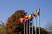 Flags In Autumn Sky poster