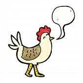 cartoon clucking hen