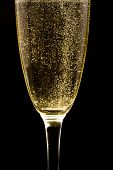 picture of champagne glass  - Flute with sparkling champagne against black background - JPG