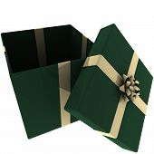 Rendered Open Green Present With Gold Bow