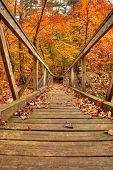 Wooden Bridge In The Fall