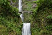 Multnomah Falls And Bridge