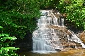 foto of wildcat  - A view of the Wildcat Branch Waterfall in the state of South Carolina - JPG