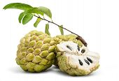 Custard Apple Isolated