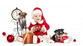 baby  wearing a santa hat and dog