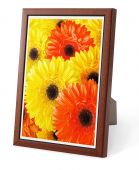 Isolated Decorative Picture Frame