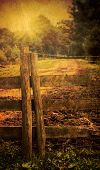 Country fence with road leading to woodland - vintage tone effect and texture added