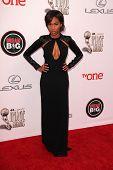 LOS ANGELES - FEB 22:  Nicole Beharie at the 45th NAACP Image Awards Arrivals at Pasadena Civic Audi