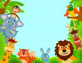 picture of jungle birds  - happy jungle animals creating a framed background - JPG