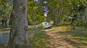 Path beside the Canal du Midi lined with Plane trees in southern France