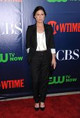 LOS ANGELES - JUL 17:  Maura Tierney arrives to the CBS-CW-Showtime Summer TCA Press Tour 2014  on July7, 2014 in West Hollywood, CA.