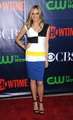 LOS ANGELES - JUL 17:  Vinessa Shaw arrives to the CBS-CW-Showtime Summer TCA Press Tour 2014  on July7, 2014 in West Hollywood, CA.