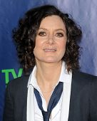 LOS ANGELES - JUL 17:  Sara Gilbert arrives to the CBS-CW-Showtime Summer TCA Press Tour 2014  on July7, 2014 in West Hollywood, CA.