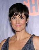 LOS ANGELES - JUL 17:  Zoe McLellan arrives to the CBS-CW-Showtime Summer TCA Press Tour 2014  on July7, 2014 in West Hollywood, CA.