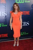 LOS ANGELES - JUL 17:  Roma Downey arrives to the CBS-CW-Showtime Summer TCA Press Tour 2014  on Jul