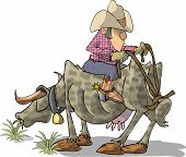 Cattle rancher