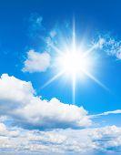 Sunshine Outdoor Heaven Wallpaper