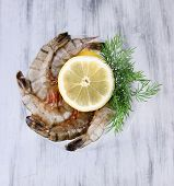 Martini glass of fresh tasty prawns with lemon and dill on grey wooden background