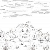 Halloween pumpkins army, contours