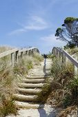 Walkway leading through sand dune to the beach