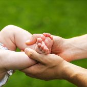 Baby Feet Cupped Into Fathers Hands.