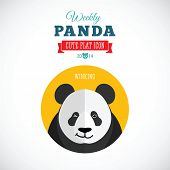 Weekly Panda Cute Flat Animal Icon - Winking