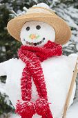 Winter - Snowman In A Snowy Landscape With A Hat