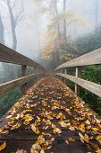 Autumn Scenic Blue Ridge Mountain Bridge