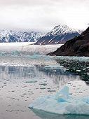 Glacier Bay Fjord
