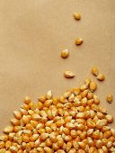Corn kernels arranged as the background