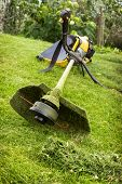 image of trimmers  - Petrol trimmer on the sloped lawn in the garden - JPG
