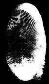 Real Partial Fingerprint