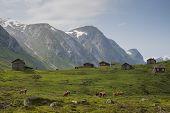 Norway's beautiful mountain scenery