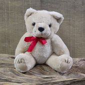 Old Shabby Chic Teddy-bear Is Sitting On Rustic Wood - Object For Christmas Decoration