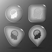 Human brain. Glass buttons. Raster illustration.