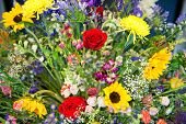 Colorful interior arrangement of a variety of summer flowers with roses, dahlia, agapanthus and Barberton daisies in a horizontal floral botanical background
