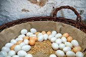 Fresh brown and white free range farm eggs nestling on straw in a large basket against an old stone