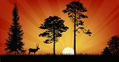 illustration with deer at sunset