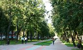 The Famous City Park In Nizhny Novgorod