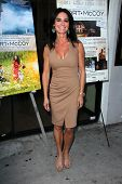 LOS ANGELES - AUG 15:  Betsy Russell at the