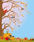 Autumn impression,