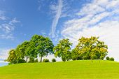 foto of bonnes  - Peaceful image of vibrant green grass and trees against a blue sky with clouds and room for copy space - JPG