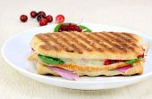 Delicous Panini Of Fresh Turkey, Spinach, Melted Cheese And Cranberries.