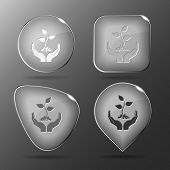 life in hands. Glass buttons. Vector illustration.